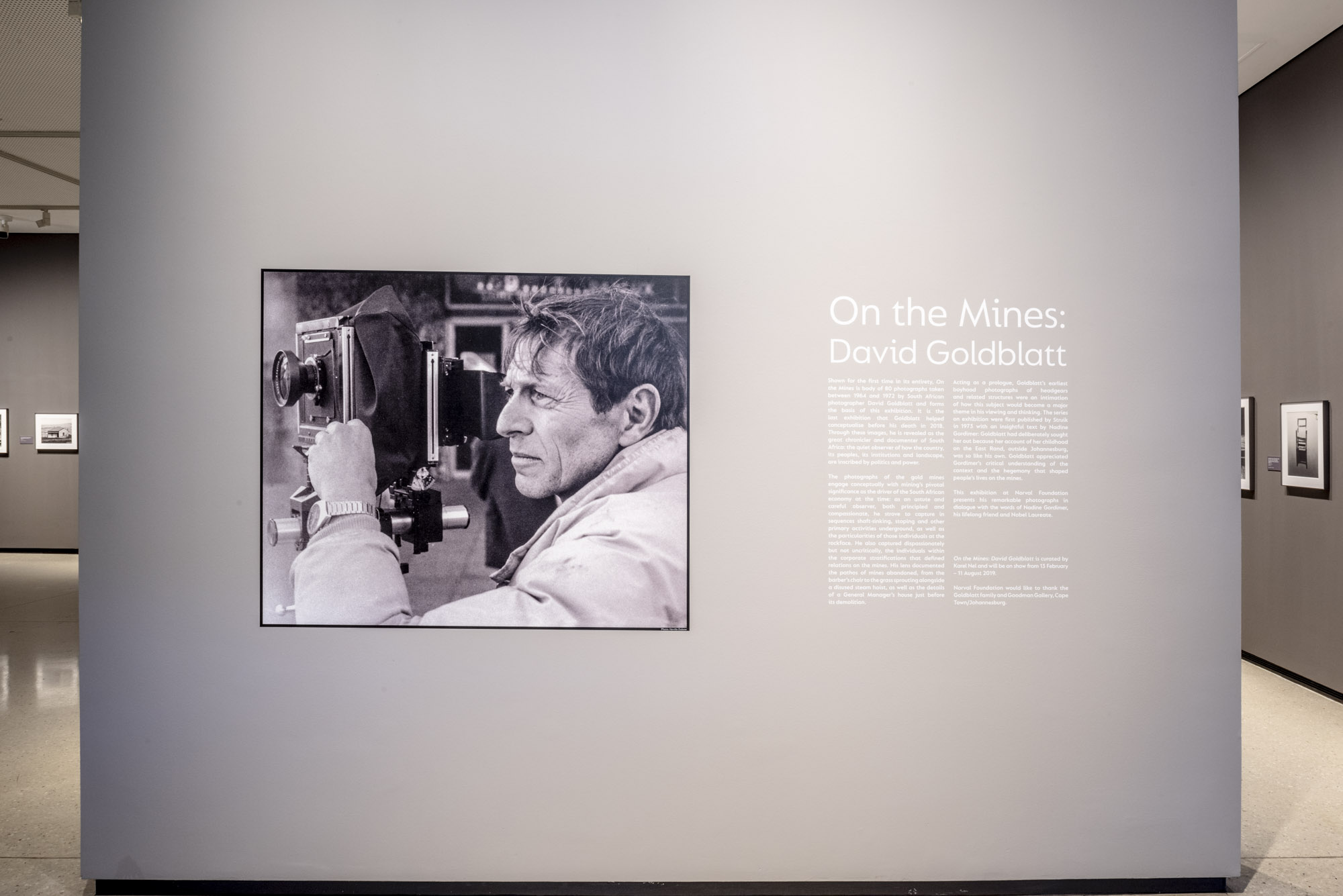On the Mines: David Goldblatt | Norval Foundation